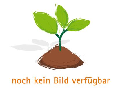 Kapuzinerkresse (nicht rankend) - Bio-Samen online kaufen - Bingenheim Biosaatgut