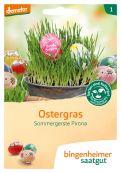 Ostergras - Bio-Samen online kaufen - Bingenheim Biosaatgut