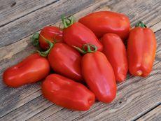 San Marzano - Bio-Samen online kaufen - Bingenheim Biosaatgut