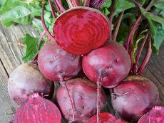 Gesche (AS) – buy organic seeds online - Bingenheim Online Shop