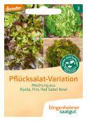 Pflücksalat Mischung - Bio-Samen online kaufen - Bingenheim Biosaatgut