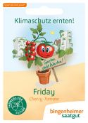 Philamina (AS) – buy organic seeds online - Bingenheim Online Shop