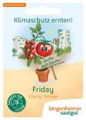 Friday - Philamina (AS) - Bio-Samen online kaufen - Bingenheim Biosaatgut