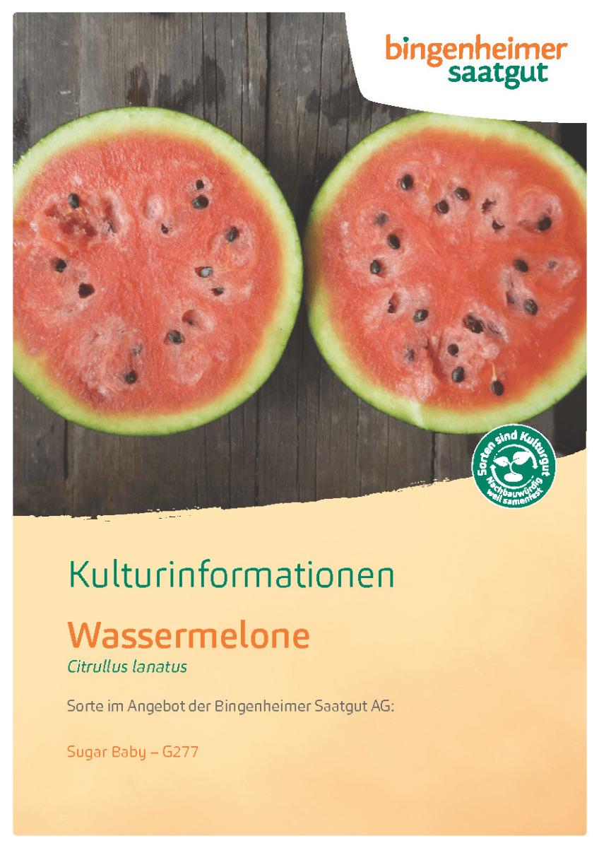 Kulturinformationen Wassermelone