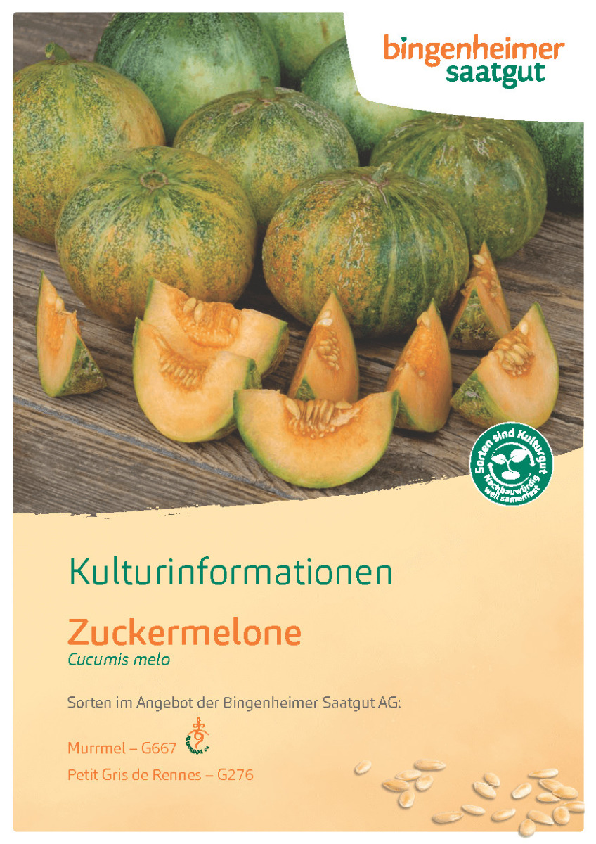 Kulturinformationen Melone